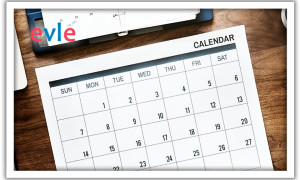 Сроки уплаты налогов в 2019 году: таблица, календарь