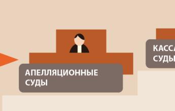 Новые суды и «процессуальная революция»: руководство пользователя