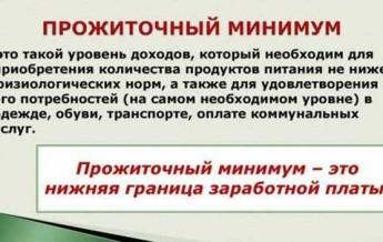 Уровень жизни и прожиточный минимум в 2020 году — в москве